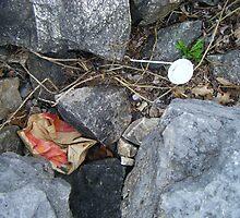 negative- trash in the rocks by ianbad