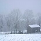 Forgotten Farmhouse Blizzard by Gene Walls