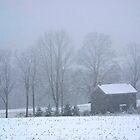 Forgotten Farmhouse Blizzard by Gene Walls