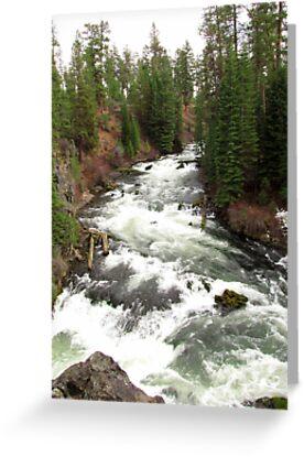 Benham Falls ~ Deschutes National Forest ~ Bend, Oregon by Kimberly Chadwick