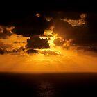 Zeus Light by Julius C Montes