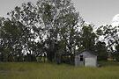 Old Marlborough Hut by Jayson Gaskell