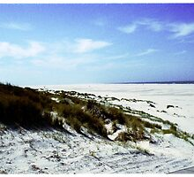 the beach with his white dunes by StudioRenate