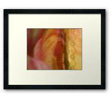 Behind Lace - JUSTART ©  Framed Print