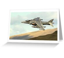 Harrier Greeting Card