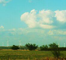 Wind Farm by Sarah J. Wheeler