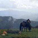 Mt Stirling - Victoria by saltbushbill