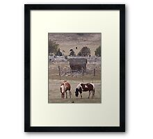 A Painted Pair Framed Print