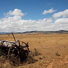 landscapes #169, steel wheels for planting  by stickelsimages
