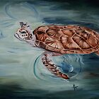Green Sea Turtle by Brenda Thour