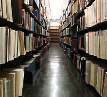 Alderman Library Stacks - UVA  ^ by ctheworld