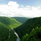 Pennsylvania Grand Canyon by Jcook