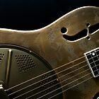 Guitar Icon : Resonator by Nick Bland