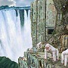 White Gorilla Tribe by Walter Colvin