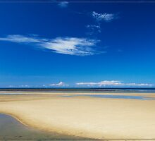 from Yule Point at low tide (near Port Douglas) by Chris Cohen