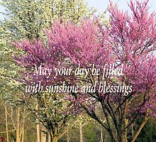 Sunshine and Blessings by Marie Sharp