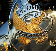 Harley Davidson by JpPhotos