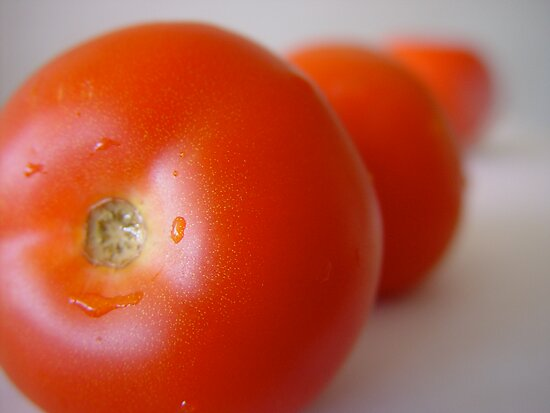 Tomatoes by TimJ
