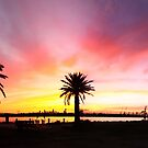 Panoramic sunrise by Lois Romer