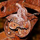Rusty Padlock by imagio