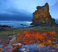 Low Tide at the Rock by David  Hibberd