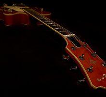 Guitar - Aria Bigsby Licensed by espanek