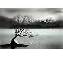 Wanaka Photographic Print