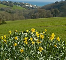 Heligan to Mevagissey by robdavies
