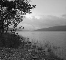 Loch Arkaig by WatscapePhoto