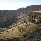 Owyhee River Gorge by slaurance