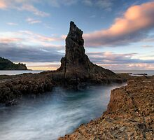 Point by Michael Treloar