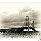 Mackinac Bridge No 0417 by Theodore Black
