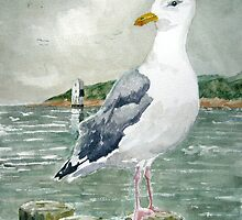 """The Opportunist"" - Herring Gull by Timothy Smith"