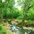 La Poza del Cajon, river near San Juan de Puriscal Take 2 by Guy Tschiderer