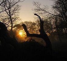 Awakening Ghost by wiggyofipswich