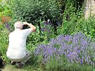 Newstead Abbey Gardens by Audrey Clarke