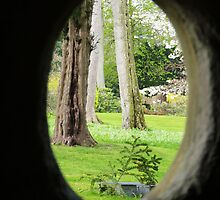 From St Mary's Well, Bodrhyddan Hall. by artfulvistas