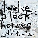 Twelve Black Horses by John Douglas