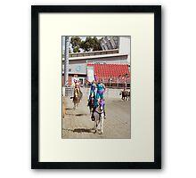 RES 2010 - 29 Framed Print