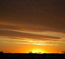 Tangerine Sky © by Vicki Ferrari