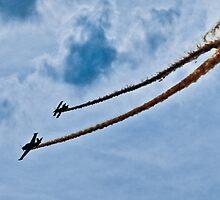 Tyabb Airshow Pitt & Debonair by Tom Newman