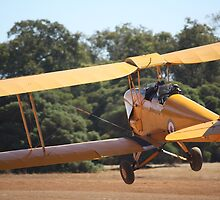 DH37 Tiger Moth Take Off by Stephen Horton