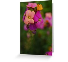 Wallflower World Greeting Card