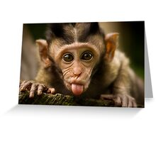 Rude Monkey Sticking Out Tongue Greeting Card