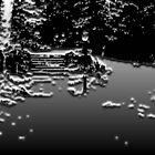 Taken in Central Park - Dark by KatMarieArt