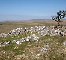 Above Bordley On Malham Moor by SteveMG