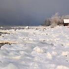 Winter colours by Marek Nõlvak