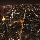 An Owl's perspective... looking down on Manhattan at night by Lauren Banks