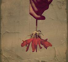 The Holding by Tara  Turner