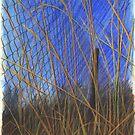 WindSieb by HannaAschenbach